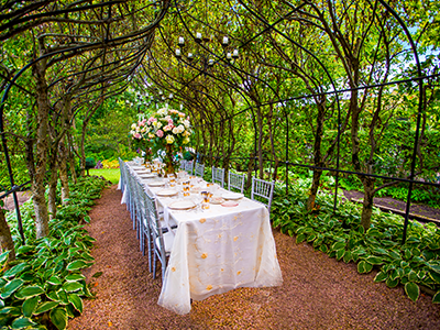 Wandering tree estate best garden wedding and event for Beautiful gardens to get married in